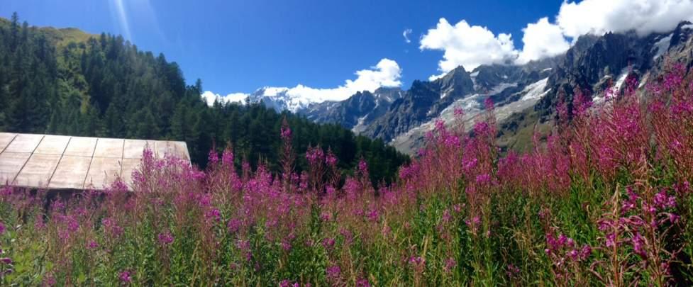 Tour du Mont-Blanc 'Light pack' - private Muellerleile Sarah