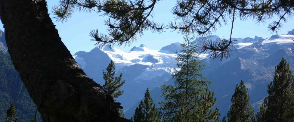 Hiking - Gran Paradiso Range (Italy)  6 days - Junior